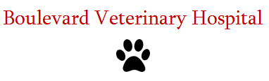 Boulevard Veterinary Hospital